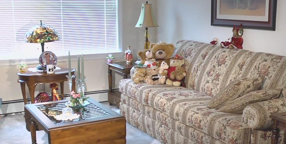 Living Room in Vista Apartment at Laurel View Village, Davidsville PA